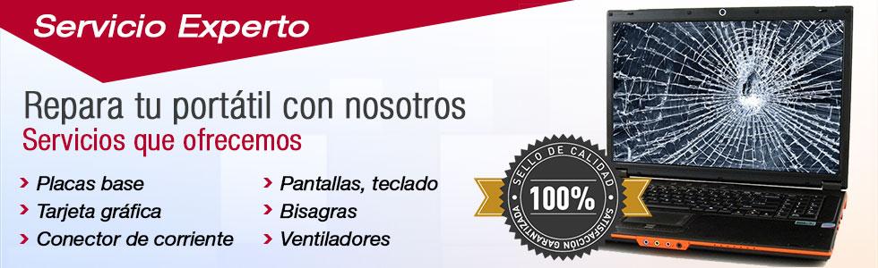 Servicio t cnico port tiles inicio reparaci n de for Reparacion de portatiles en barcelona